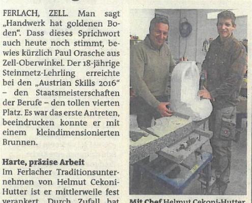 Woche Kärnten 28.12.2016 Steinmetz